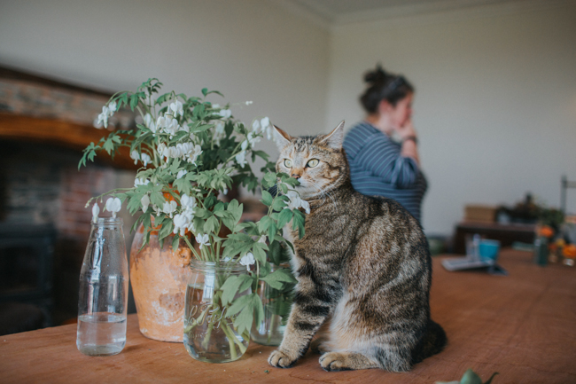 Wonderfully creative Wild Bunch flower workshops, image Lisa Webb Photography (8)