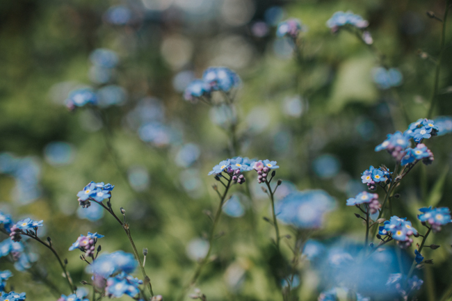 Wonderfully creative Wild Bunch flower workshops, image Lisa Webb Photography (17)