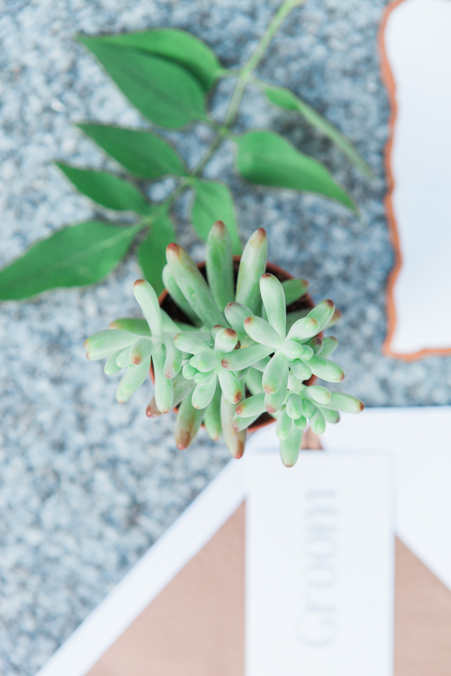 Copper and succulents for a Refinery wedding with Amanda Karen Photography Essex (36)