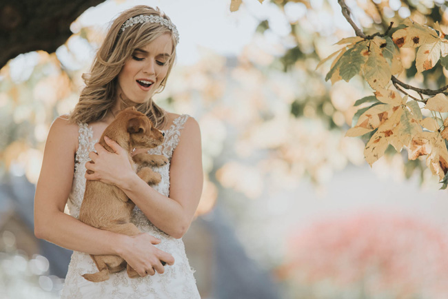 Cute puppy wedding blog, images by Oobaloos Photography (8)