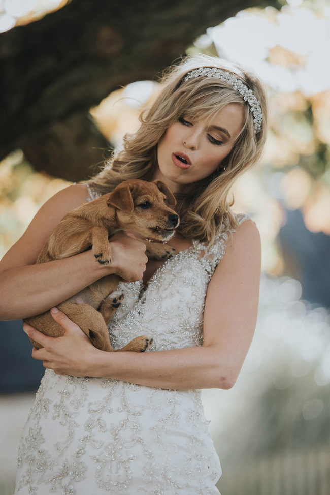 Cute puppy wedding blog, images by Oobaloos Photography (7)
