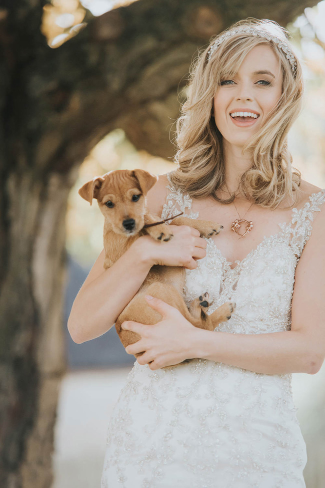 Cute puppy wedding blog, images by Oobaloos Photography (6)