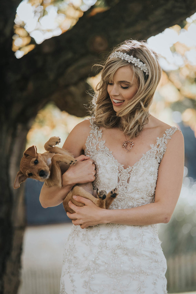 Cute puppy wedding blog, images by Oobaloos Photography (5)