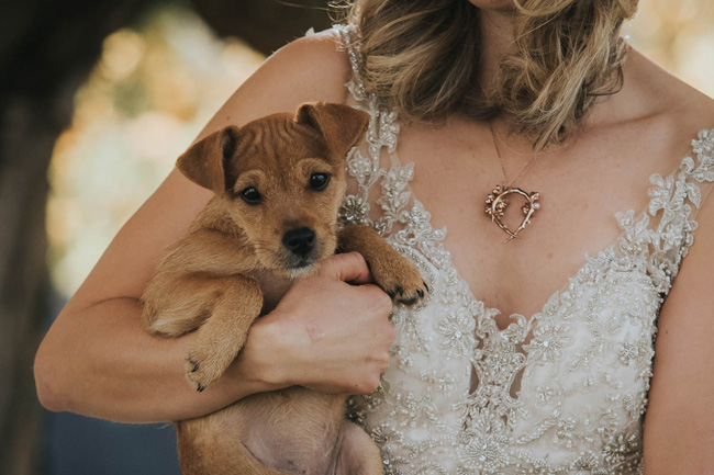 Cute puppy wedding blog, images by Oobaloos Photography (4)