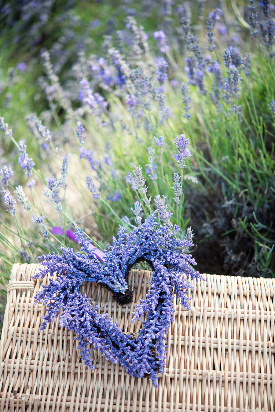 lavender wedding inspiration (9)
