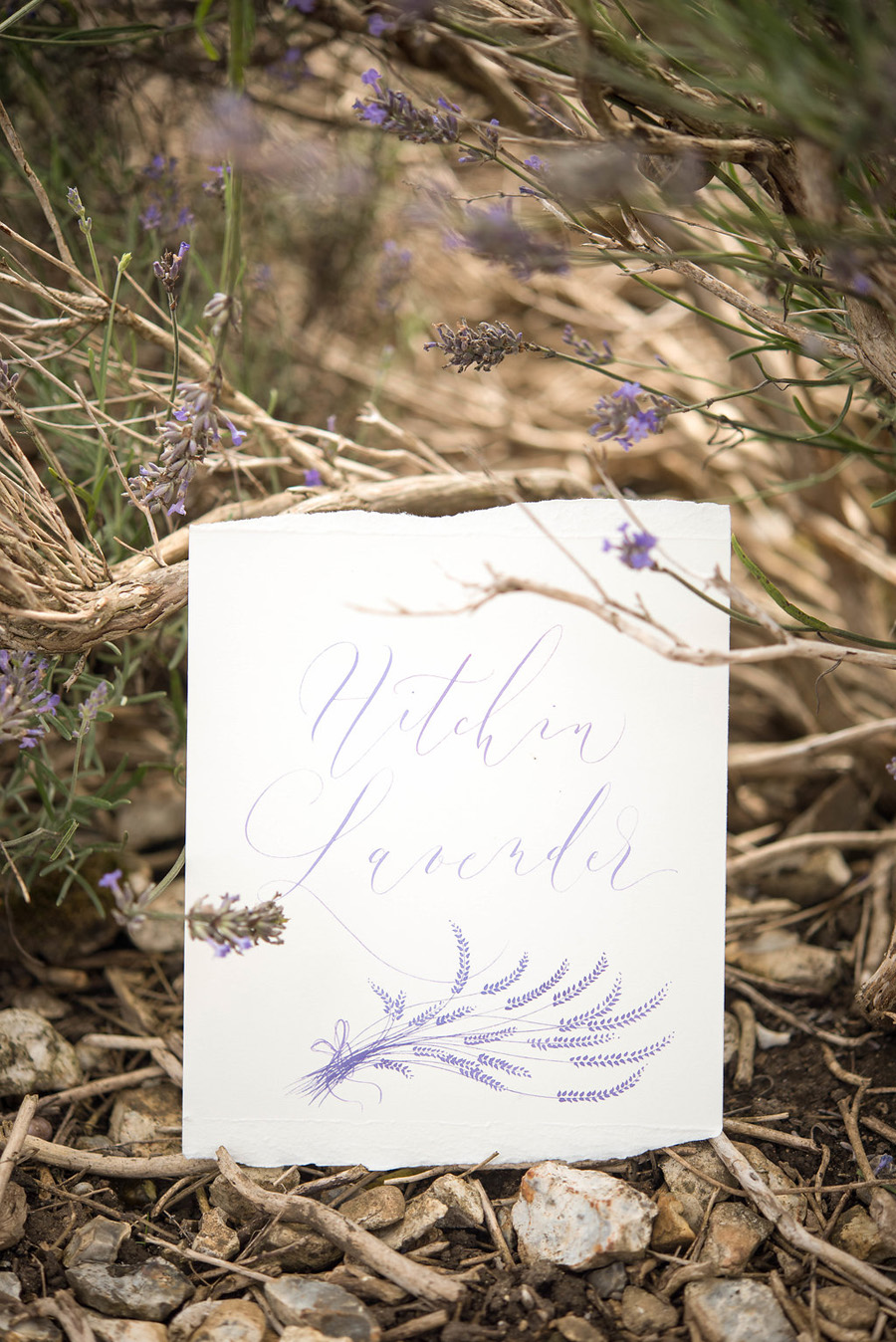 lavender wedding inspiration (10)