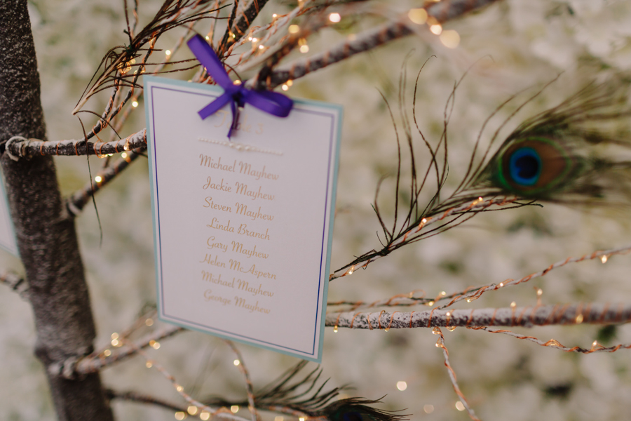Teal and purple peacock wedding ideas by planner Karen Luxford, image by Sarah Wayte Photography (23)