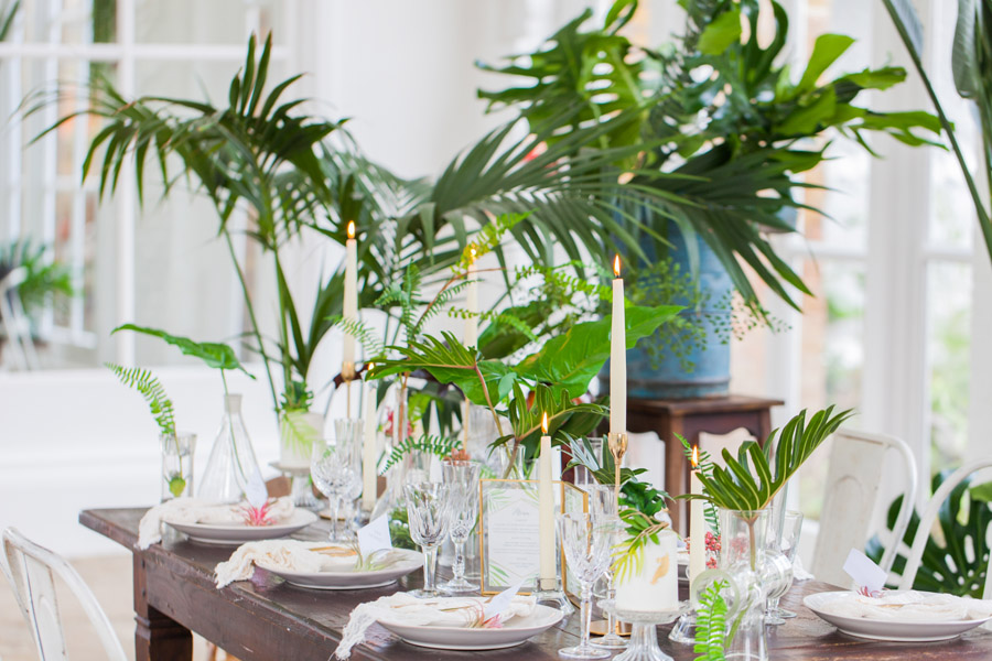 Houseplants and tropical wedding styling with www.amandakarenphotography.co.uk (20)