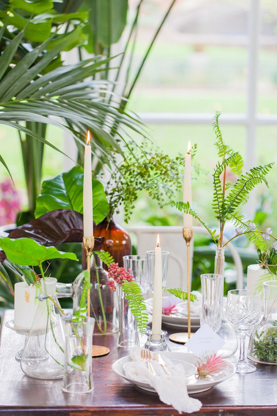 Houseplants and tropical wedding styling with www.amandakarenphotography.co.uk (23)