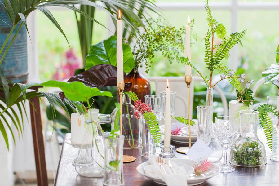 Houseplants and tropical wedding styling with www.amandakarenphotography.co.uk (24)