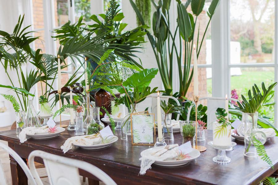 Houseplants and tropical wedding styling with www.amandakarenphotography.co.uk (11)