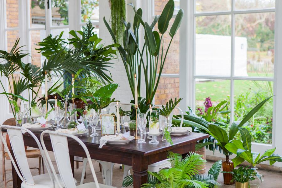 Houseplants and tropical wedding styling with www.amandakarenphotography.co.uk (13)