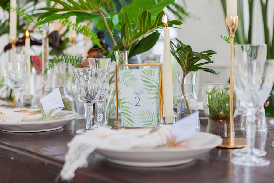 Houseplants and tropical wedding styling with www.amandakarenphotography.co.uk (14)