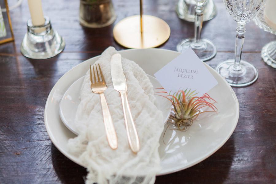 Houseplants and tropical wedding styling with www.amandakarenphotography.co.uk (15)
