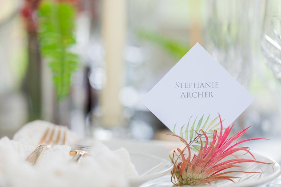 Houseplants and tropical wedding styling with www.amandakarenphotography.co.uk (18)