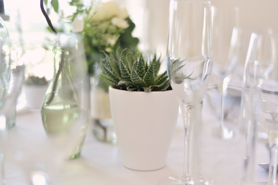Marina Walker Photography's styled shoot with succulents and affordable details for a minimalist boho wedding (13)