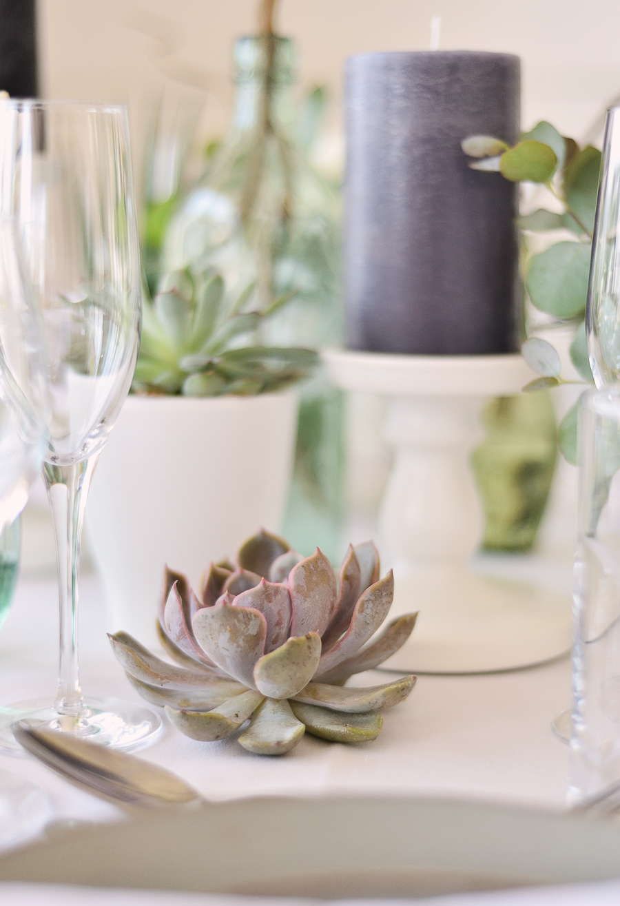 Marina Walker Photography's styled shoot with succulents and affordable details for a minimalist boho wedding (12)