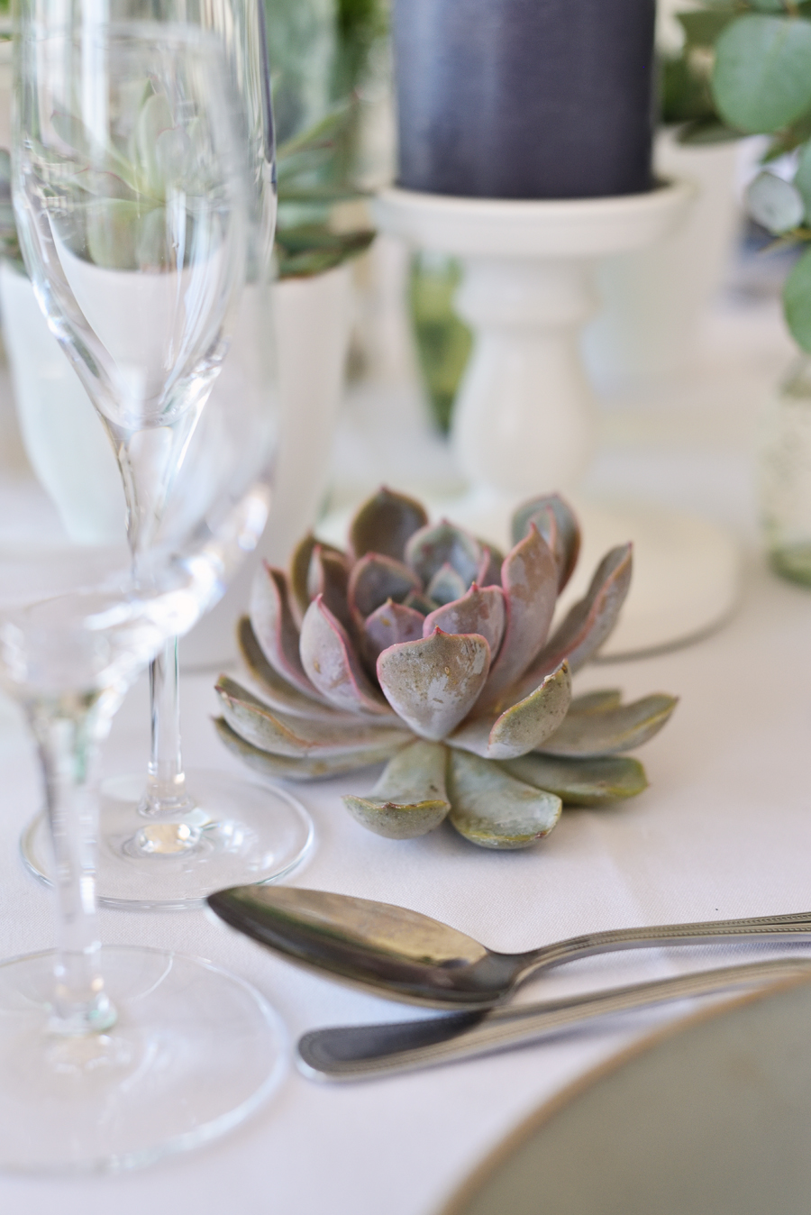 Marina Walker Photography's styled shoot with succulents and affordable details for a minimalist boho wedding (11)