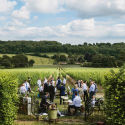 Lucie and Tom's wonderfully unique Hambledon Vineyard wedding, with York Place Studios