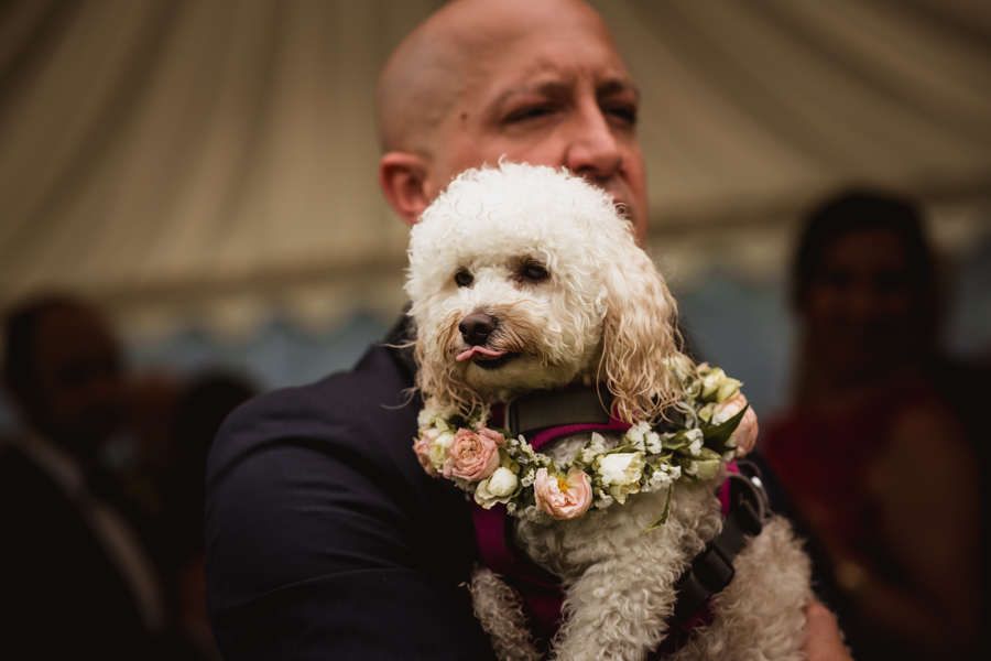 Pink flower wedding ideas and cute wedding dogs on English-Wedding.com with Robin Goodlad Photography (35)