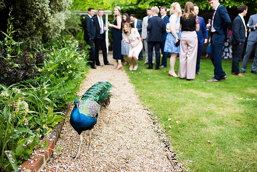 Elegant and summery Northbrook Park wedding with Fiona Kelly Photography (21)