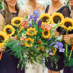 Hannah & Alex's relaxed sunflower-filled wedding in Surrey, with Amanda Karen Photography
