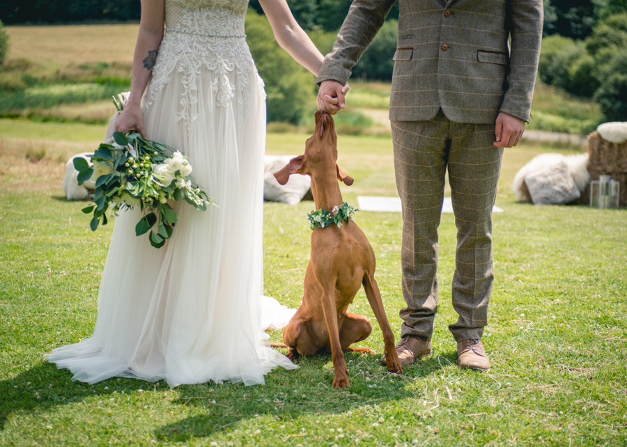 A dog friendly elopement in Cornwall - images by Iconik Photography (22)