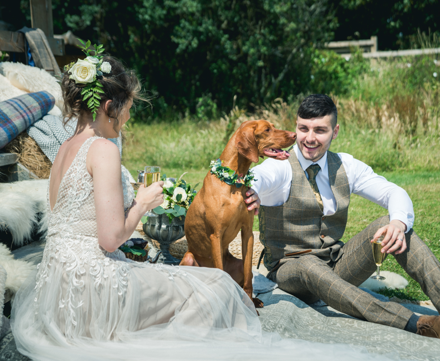 A dog friendly elopement in Cornwall - images by Iconik Photography (15)