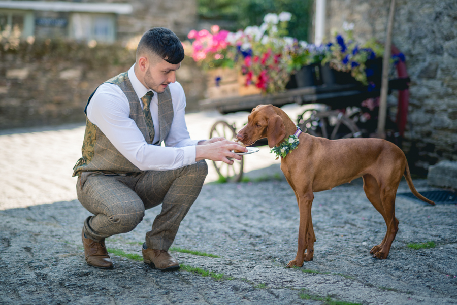 A dog friendly elopement in Cornwall - images by Iconik Photography (4)