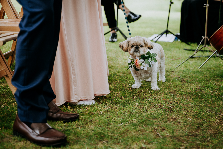 Real wedding at the Green, Cornwall - photography credit Alexa Poppe (22)