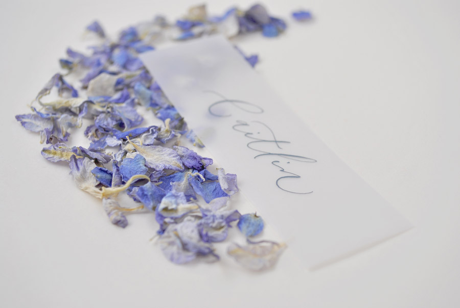 Calligraphy for weddings in the UK, Claire Gould calligrapher By Moon and Tide (3)