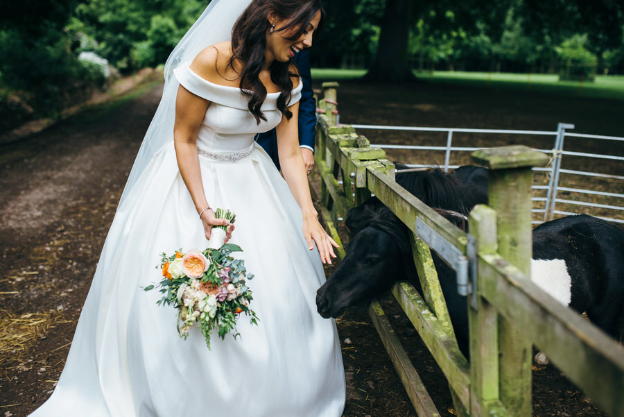 Brilliant collection of animals at weddings photos by Somerset photographer Simon Biffen on English Wedding (3)