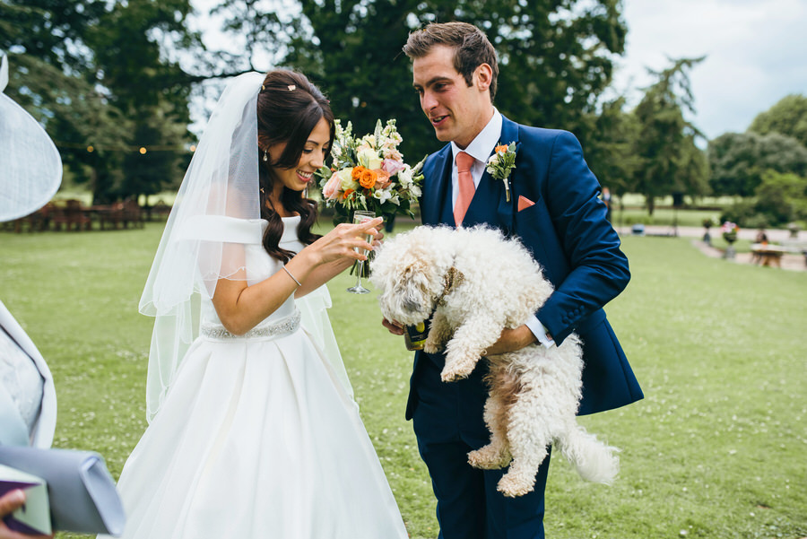 Brilliant collection of animals at weddings photos by Somerset photographer Simon Biffen on English Wedding (11)