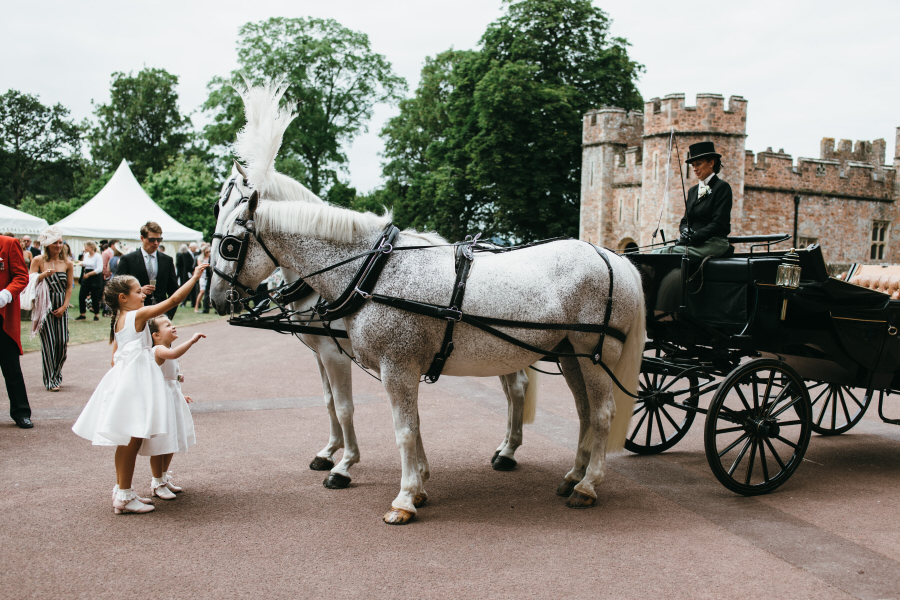 Brilliant collection of animals at weddings photos by Somerset photographer Simon Biffen on English Wedding (15)
