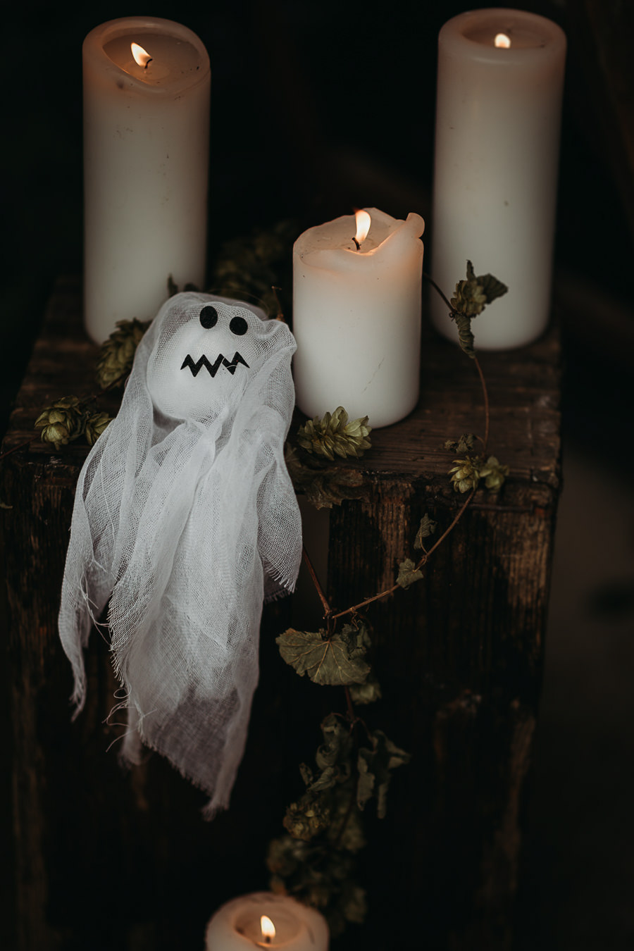 Sustainable and beautiful halloween wedding style, image credit Thyme Lane Photography (45)