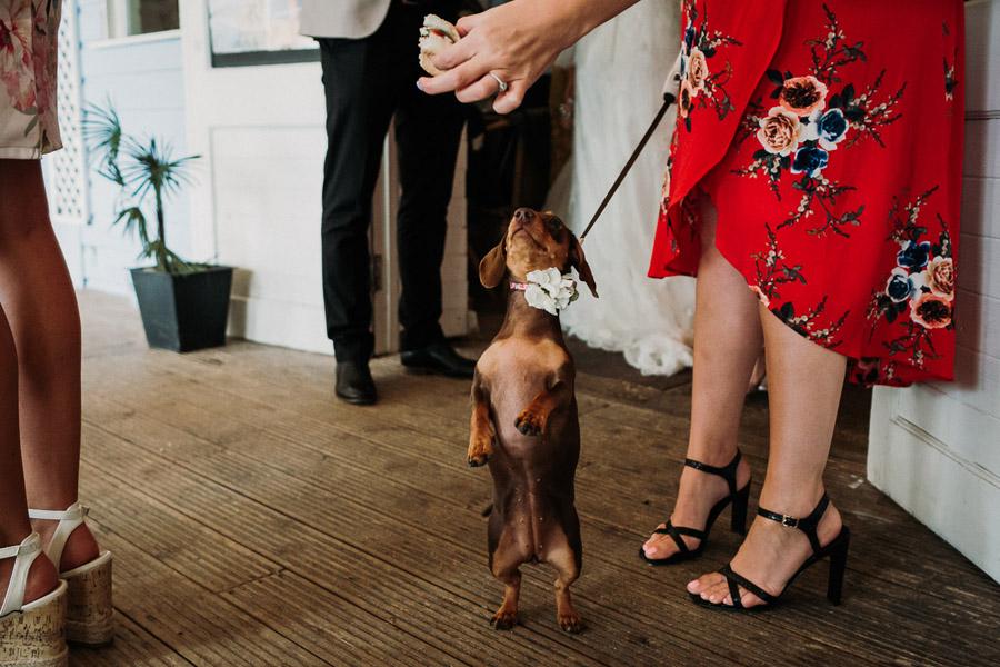Laura & Craig's lovely English wedding at Lusty Glaze, with Alexa Poppe Photography (28)
