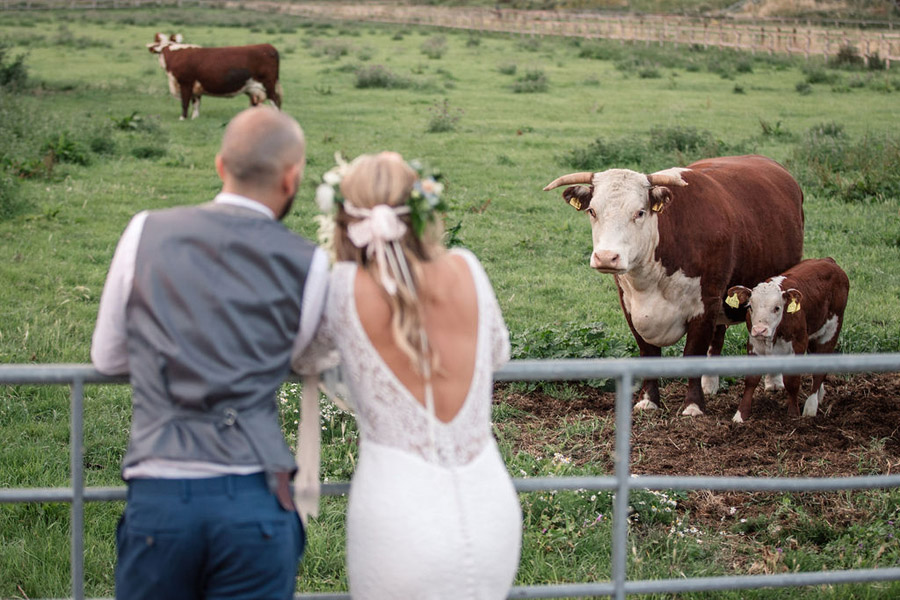 Evening sunset wedding inspiration at Willow Grange Farm, with Becky Harley Photography (49)