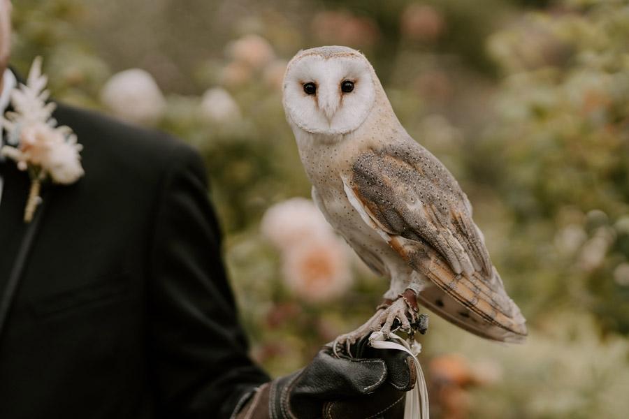 Classic and Stately – Edmondsham House wedding inspiration, image credit Jack Aldridge Photography (10)