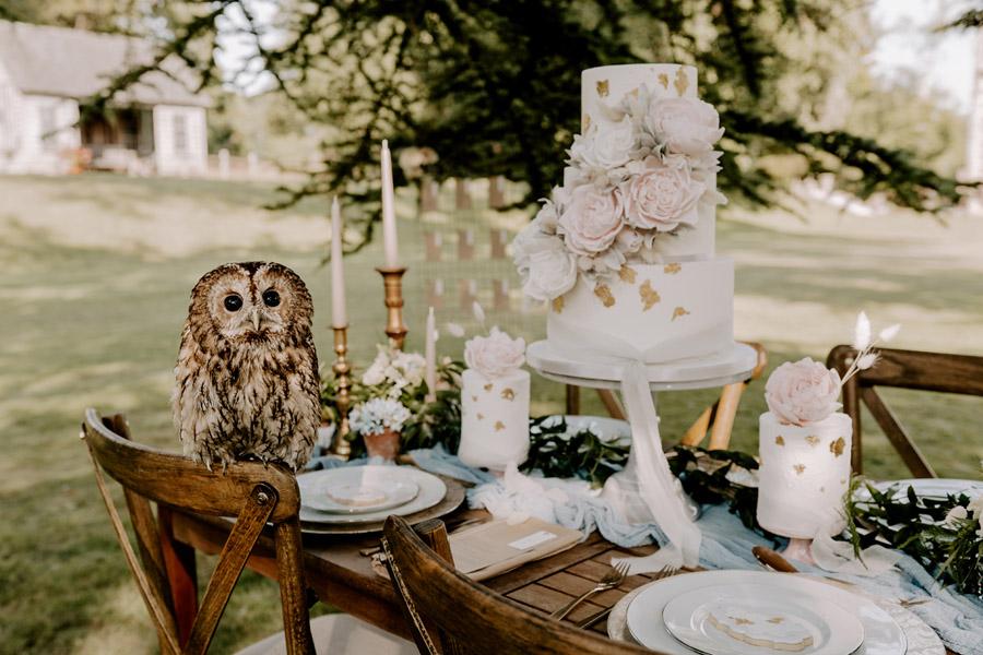 Classic and Stately – Edmondsham House wedding inspiration, image credit Jack Aldridge Photography (35)