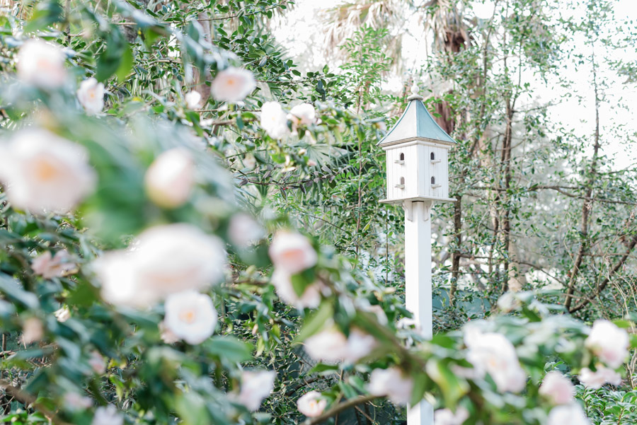 Luxury editorial garden wedding, image credit Leigh Hayward Photography (2)