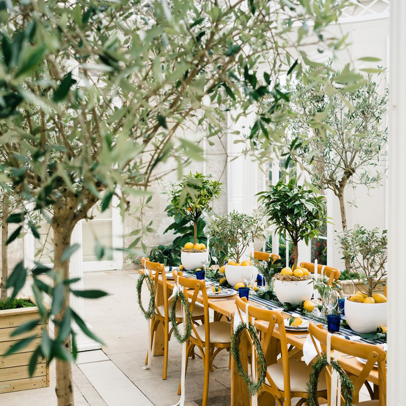 Came House wedding florist trees hire Whitestem, image by White Chalet Studio