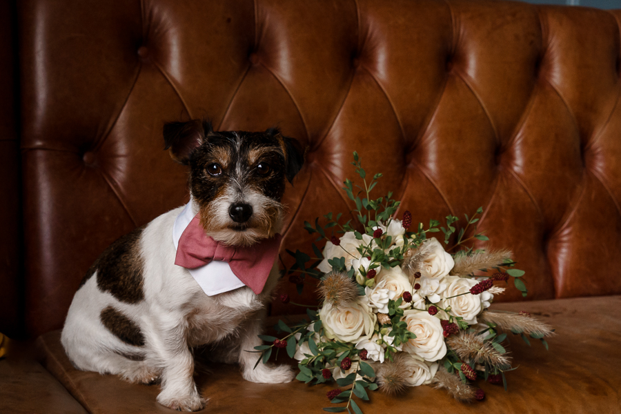 A loved-up Winchester city elopement - with adorable dogs! Photographer credit Katherine and her Camera (15)