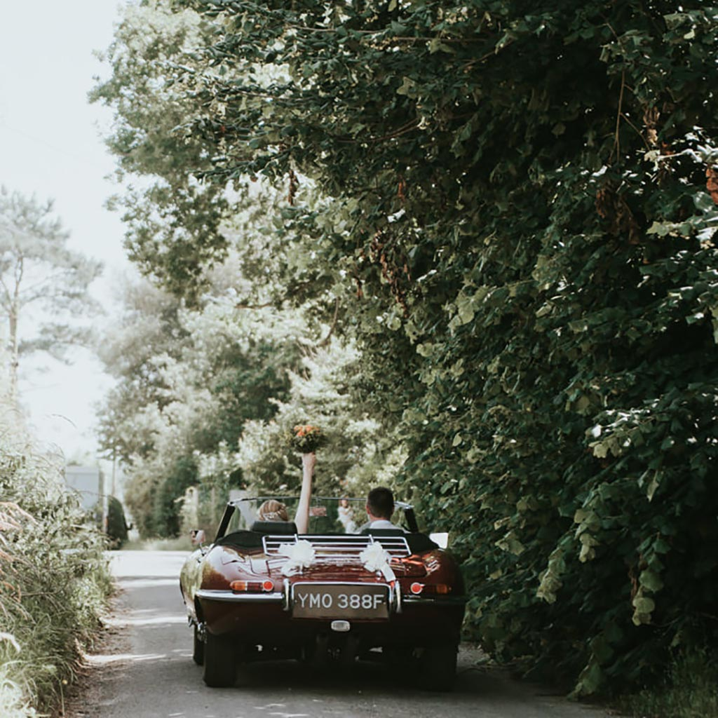A wedding car with a couple sat inside drives along a tree lined avenue at Hengrave Hall in Suffolk. Captured by Beth Beresford Photography